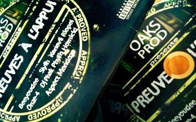 Beeyoudee met en ligne une réédition numérique de la compilation «Preuves à l'appui» parue en 2010!